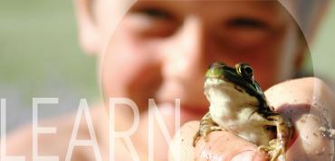 sidebar_learn