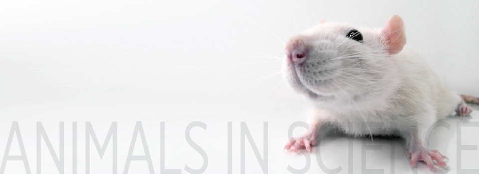Biomedical Research - American Anti-Vivisection Society