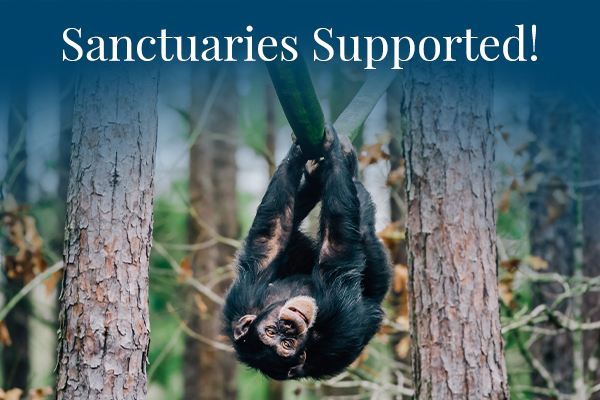 Sanctuaries Supported!