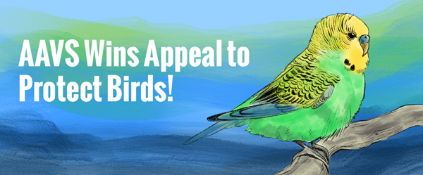 AAVS Wins Appeal to Protect Birds!