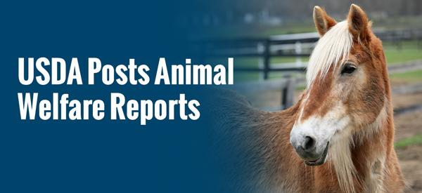 USDA Posts Animal Welfare Reports