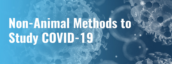 Non-Animal Methods to Study COVID-19