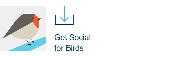 Get Social for Birds