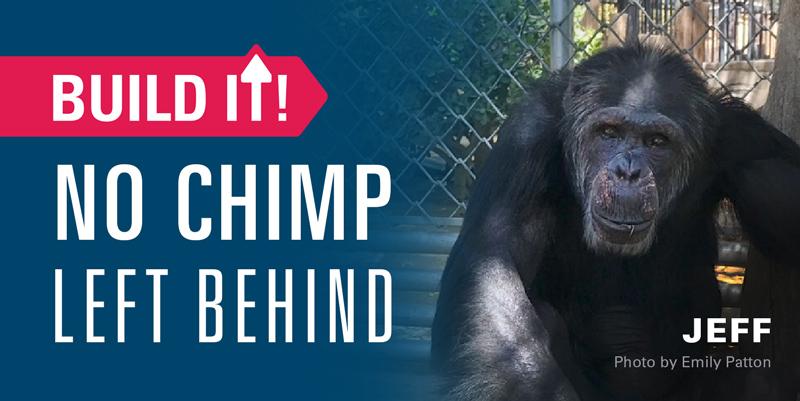 No Chimp Left Behind