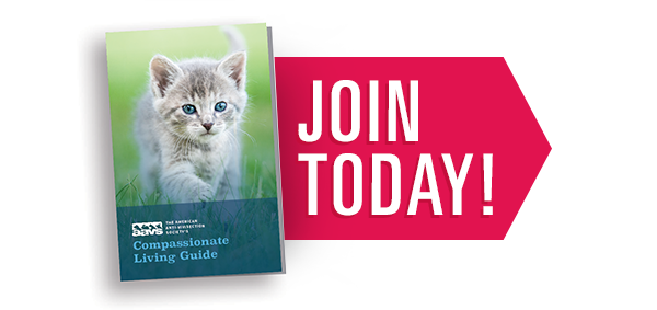 Join AAVS and Receive Our Compassionate Living Guide