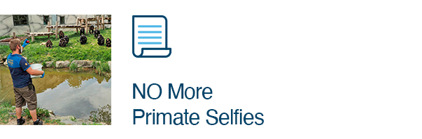 NO More Primate Selfies