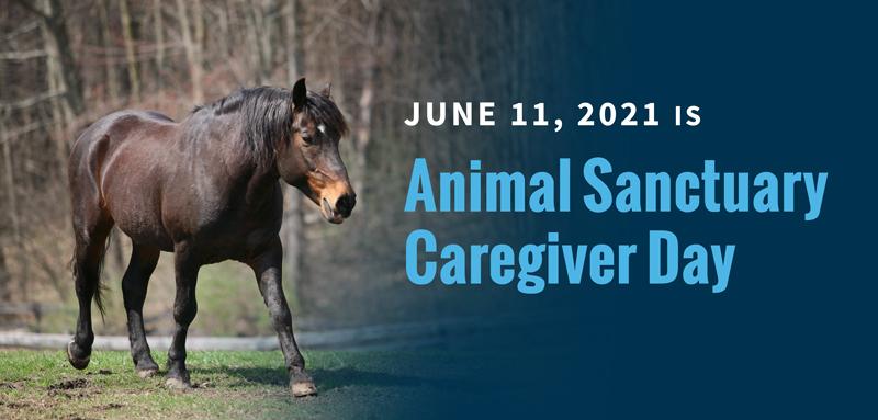 Happy Animal Sanctuary Caregivers Day